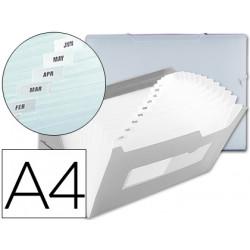 Carpeta beautone clasificador fuelle 42164 polipropileno din a4 transparent