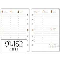 Recambio agenda finocam c499semana a la vista 91x152mm catalan